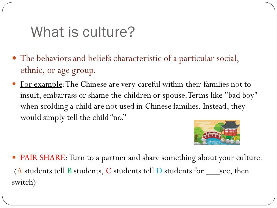 What is culture The behaviors and beliefs characteristic of a particular social, ethnic, or age group.