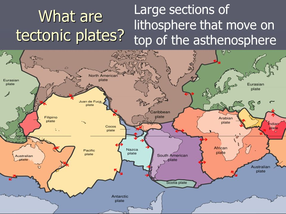 What are tectonic plates