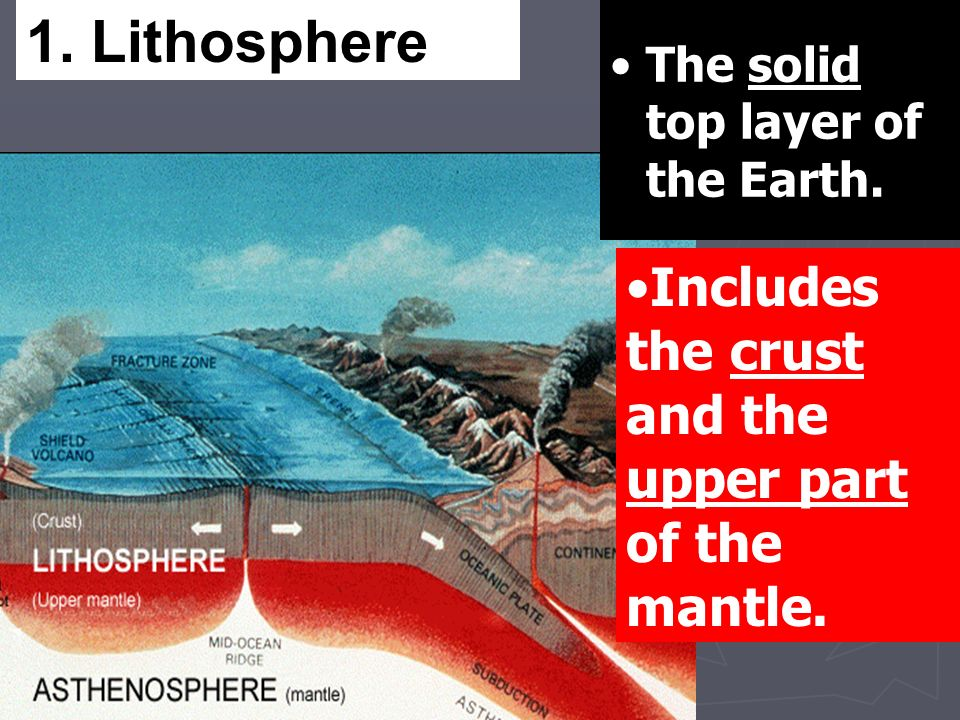 The solid top layer of the Earth.