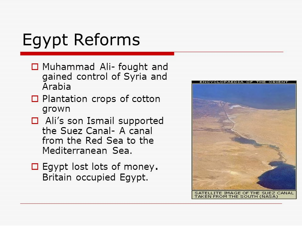 Egypt Reforms Muhammad Ali- fought and gained control of Syria and Arabia. Plantation crops of cotton grown.