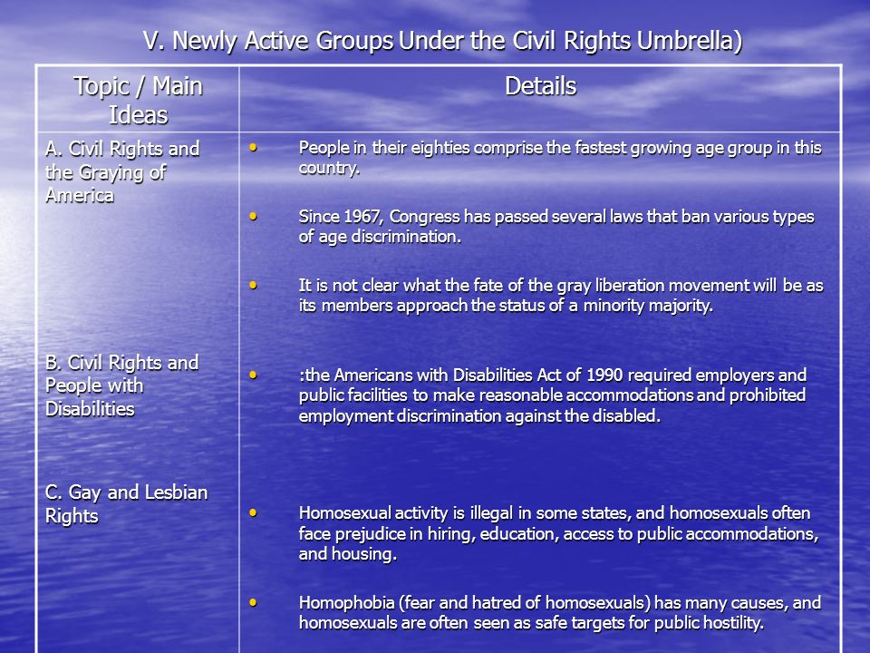 V. Newly Active Groups Under the Civil Rights Umbrella)