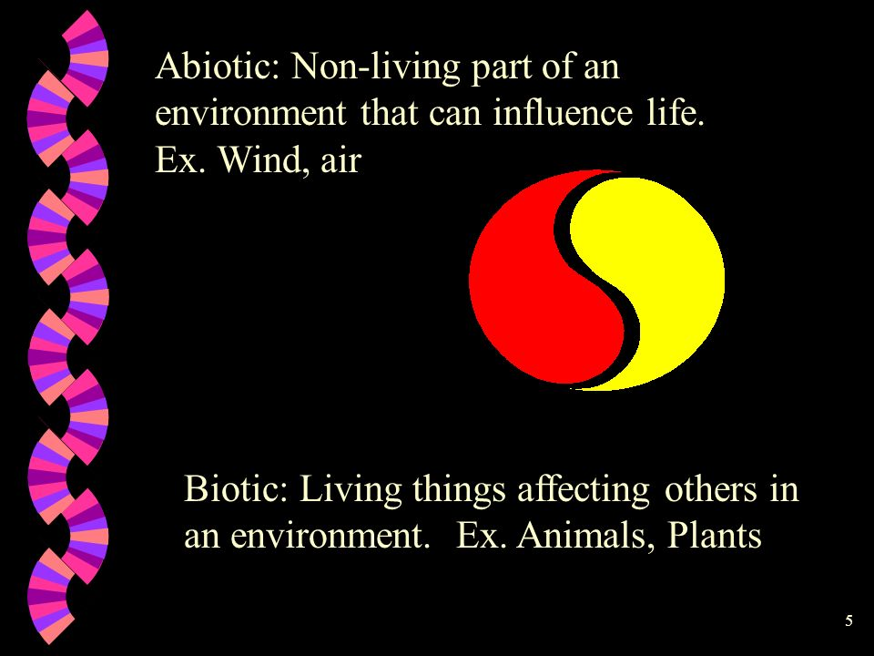 Abiotic: Non-living part of an environment that can influence life. Ex