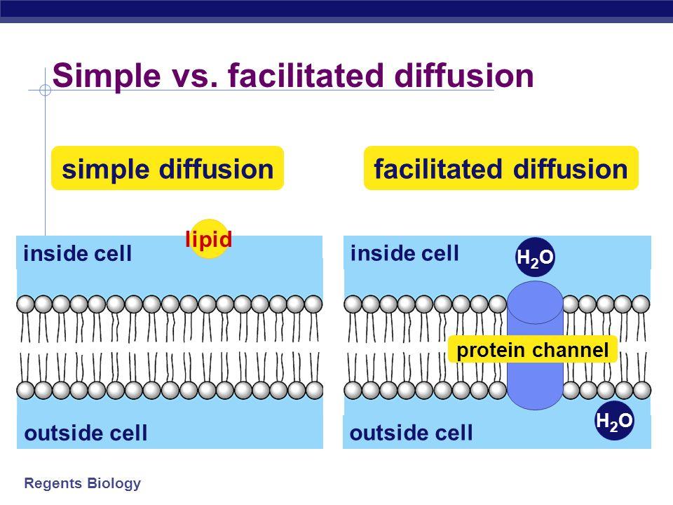 Simple vs. facilitated diffusion