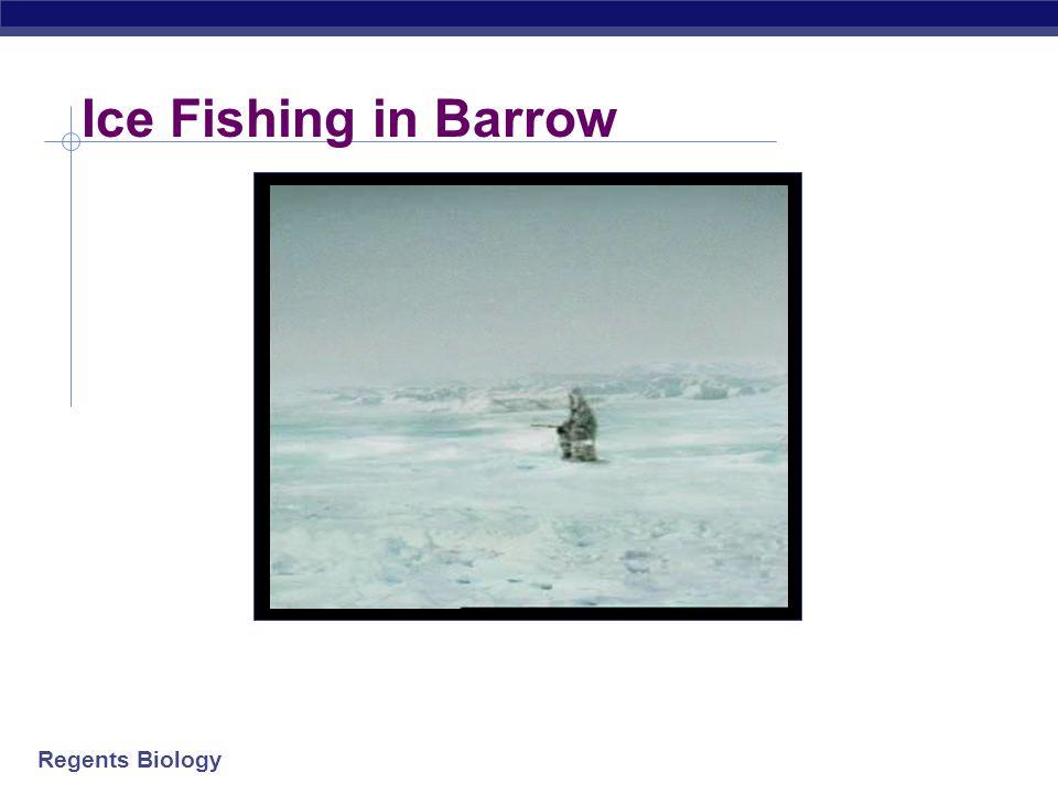 Ice Fishing in Barrow