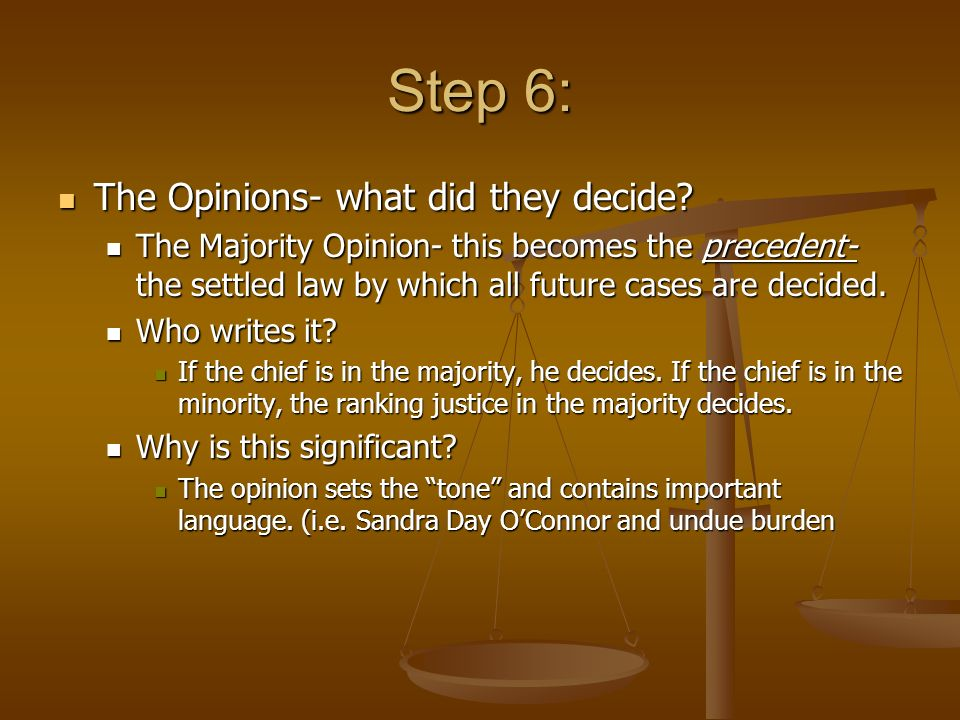 Step 6: The Opinions- what did they decide