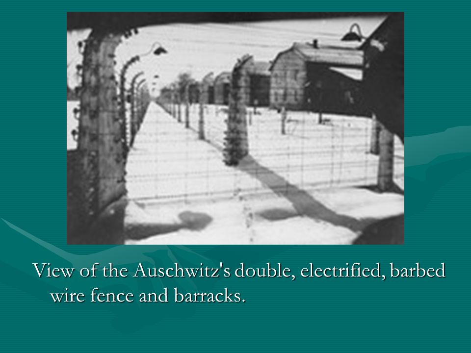 View of the Auschwitz s double, electrified, barbed wire fence and barracks.