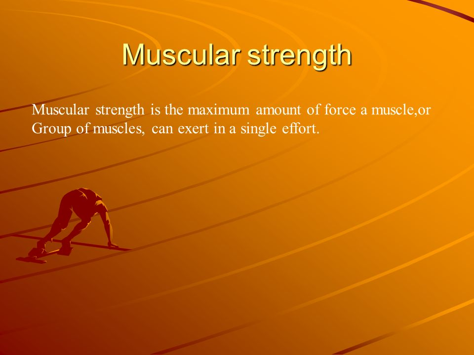 Muscular strength Muscular strength is the maximum amount of force a muscle,or.