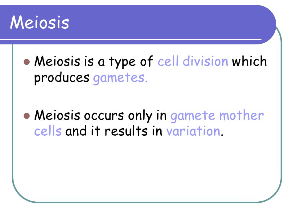 Meiosis Meiosis is a type of cell division which produces gametes.