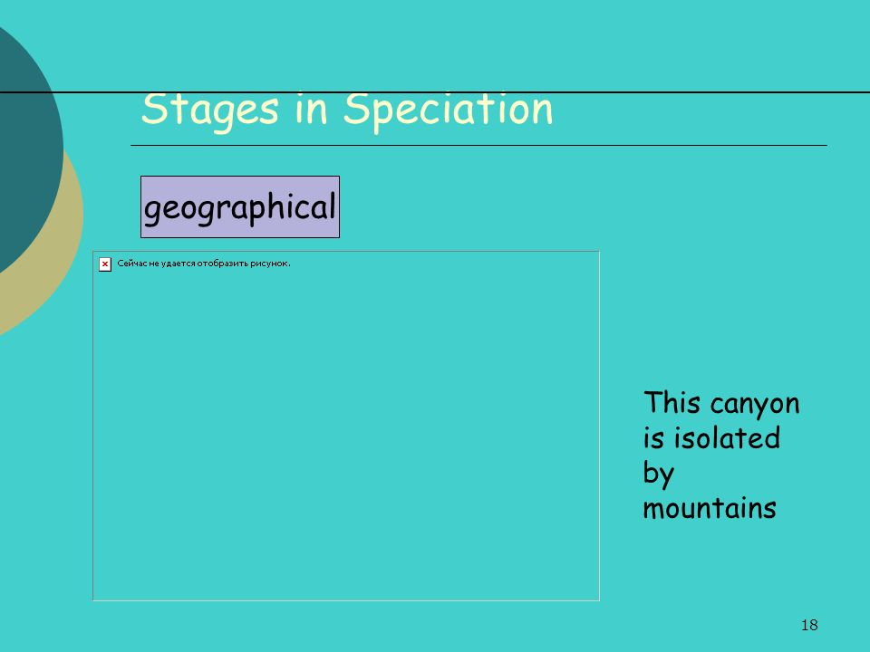 Stages in Speciation geographical This canyon is isolated by mountains