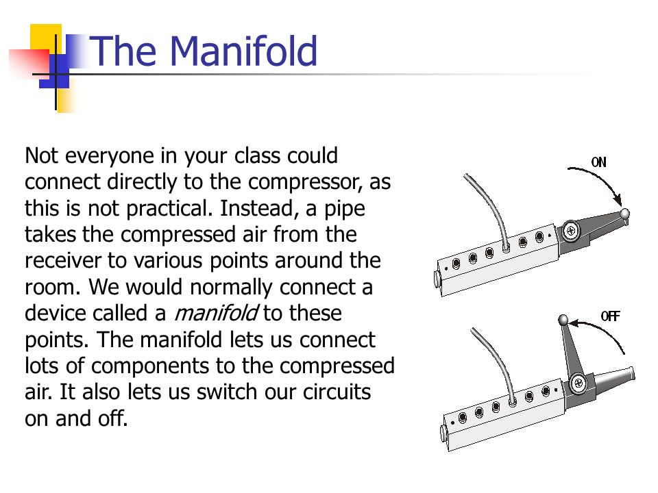 The Manifold