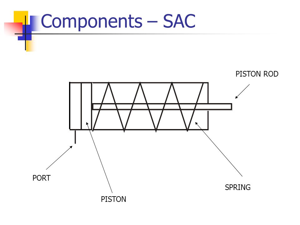 Components – SAC PISTON ROD PORT SPRING PISTON