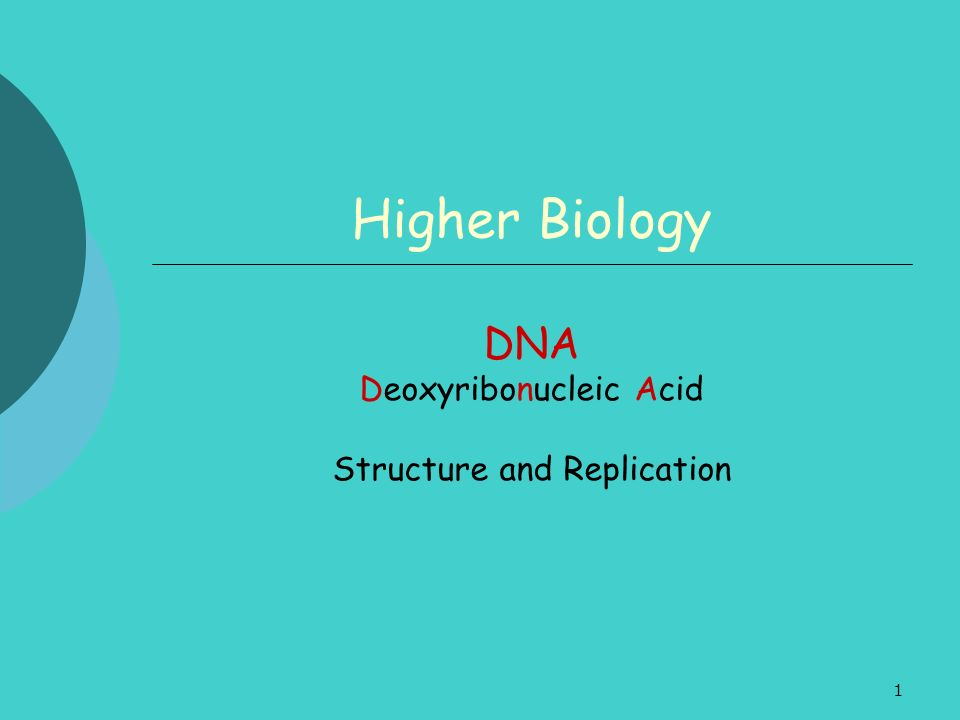 DNA Deoxyribonucleic Acid Structure and Replication
