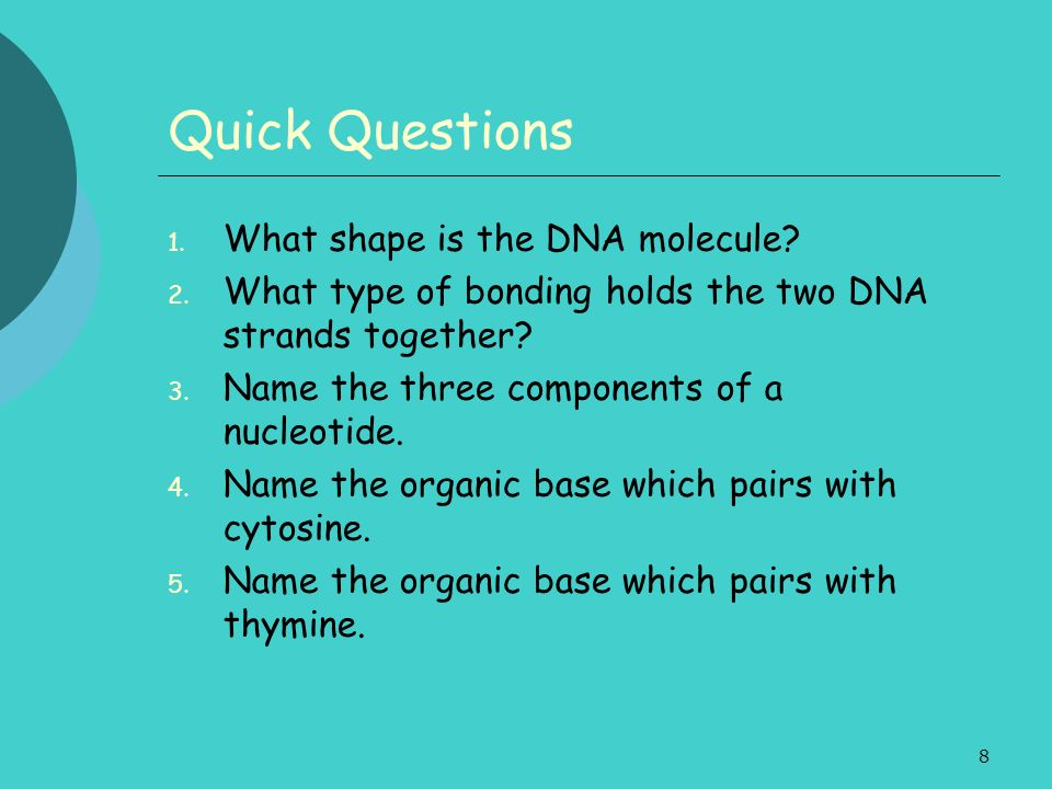 Quick Questions What shape is the DNA molecule