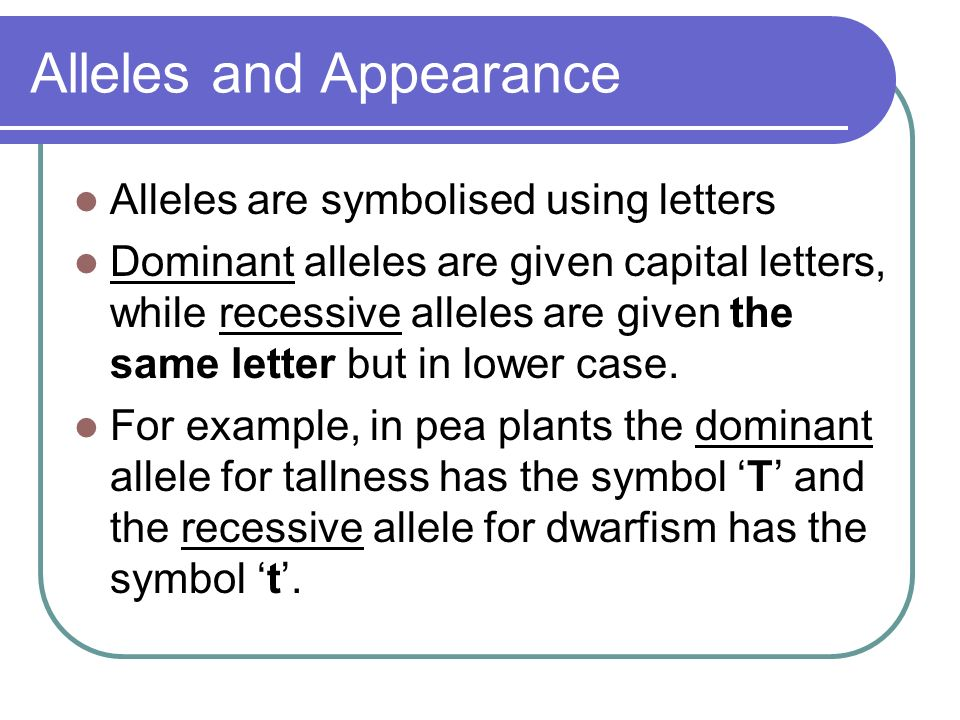 Alleles and Appearance