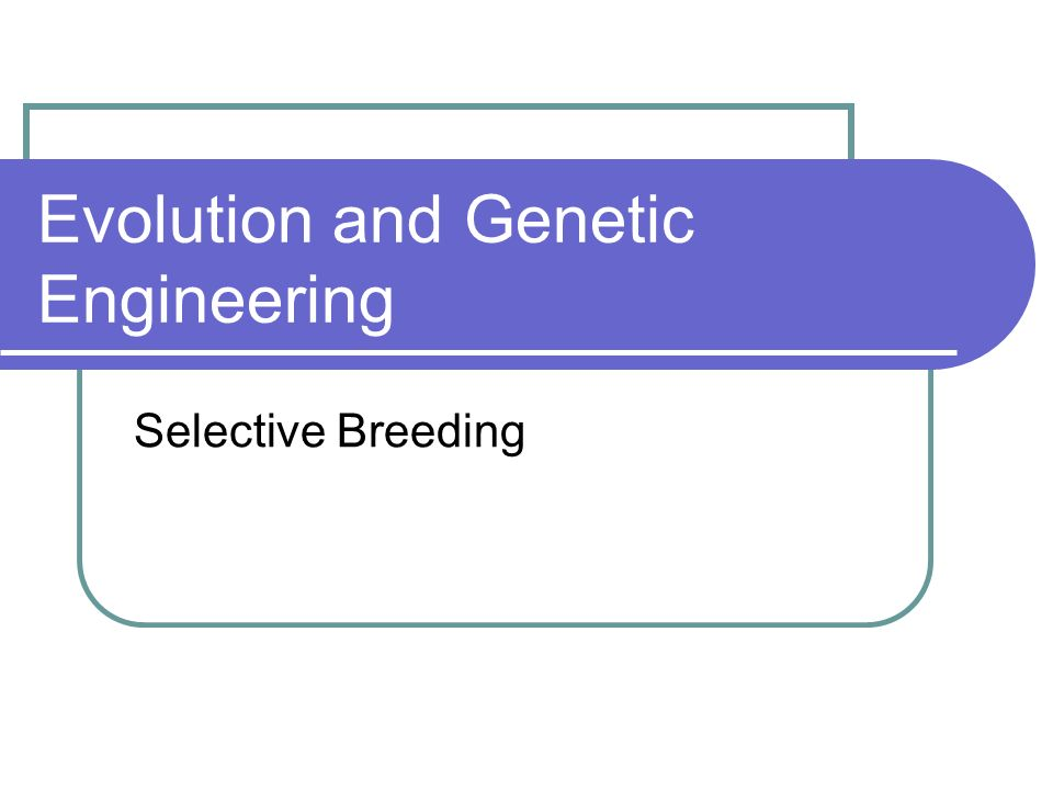 Evolution and Genetic Engineering