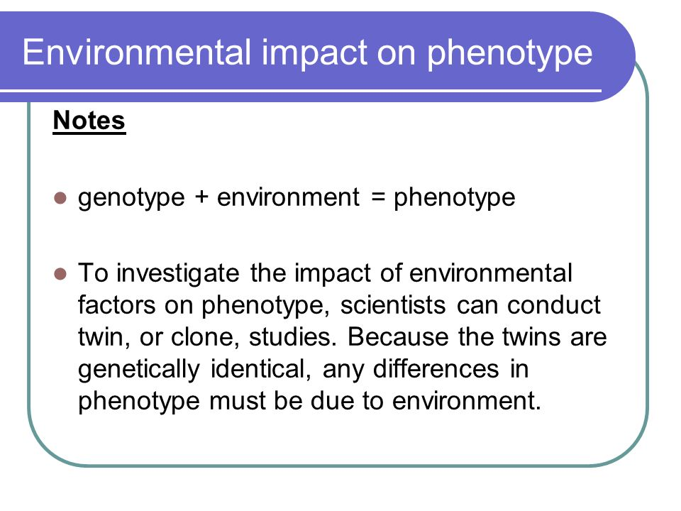 effects of environmental factors on the phenotype of pea plants Transcript of the effect of the environment on the phenotype of the the effect of the environment on environmental factors such as ph affect the coloration of.
