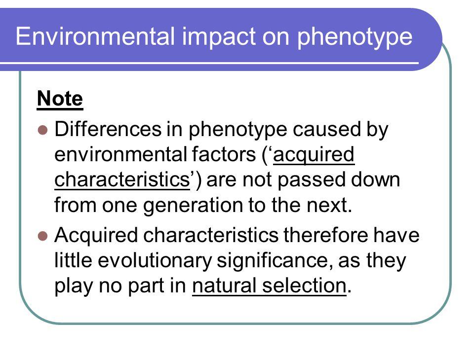 Environmental impact on phenotype