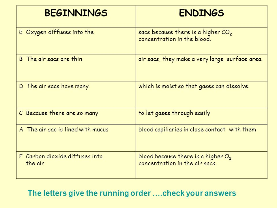 The letters give the running order ….check your answers