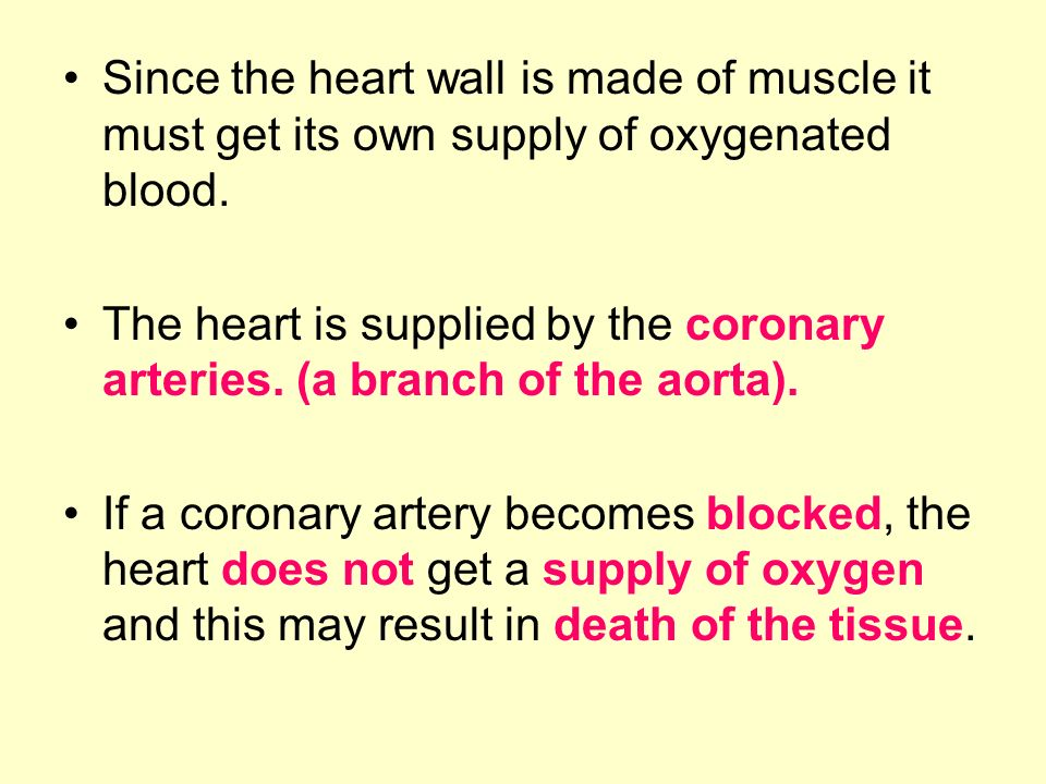 Since the heart wall is made of muscle it must get its own supply of oxygenated blood.