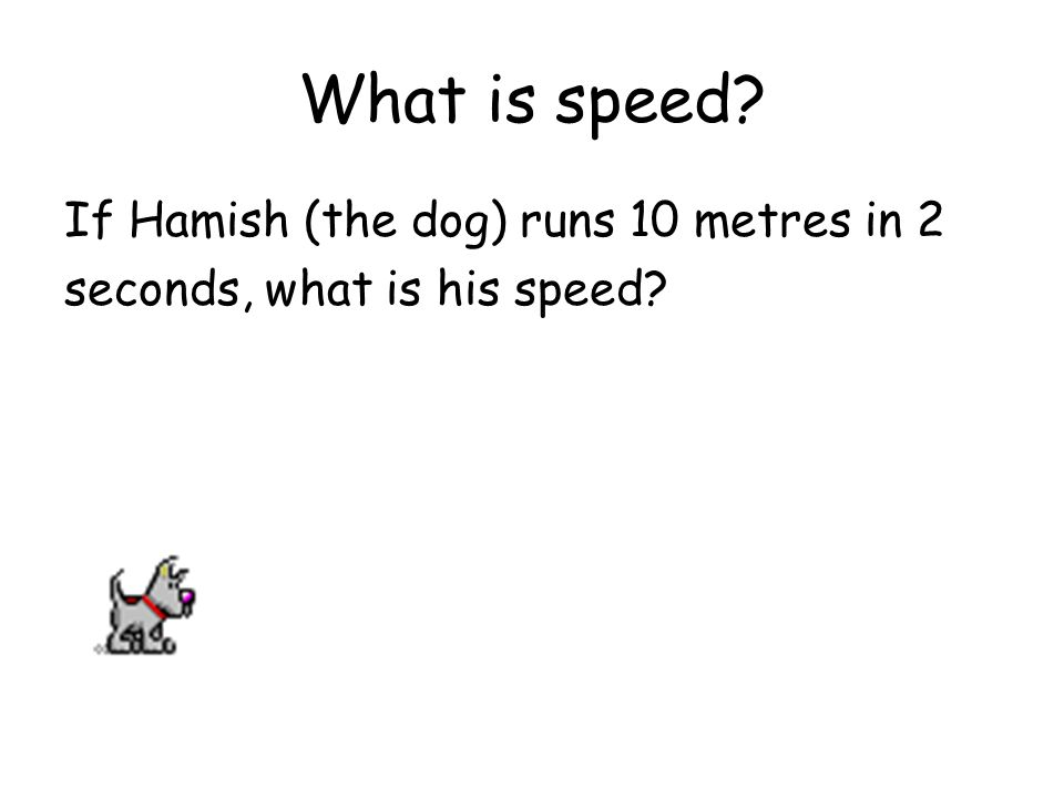 What is speed If Hamish (the dog) runs 10 metres in 2