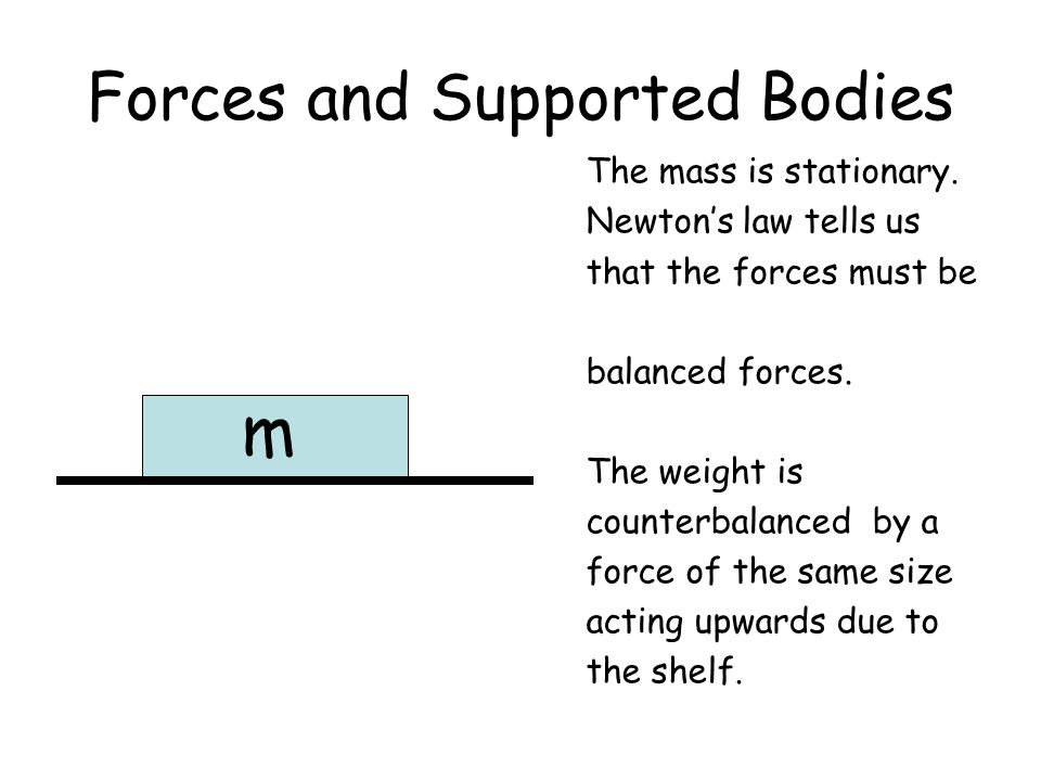 Forces and Supported Bodies