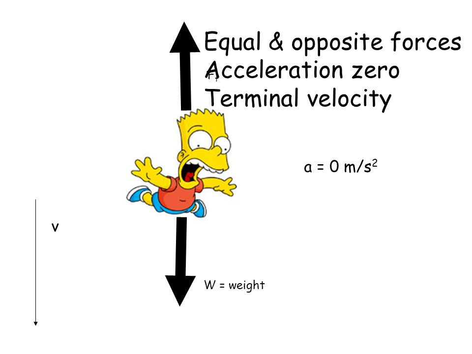 Equal & opposite forces Acceleration zero Terminal velocity