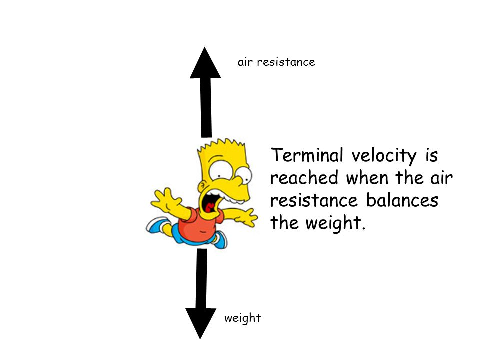 air resistance Terminal velocity is reached when the air resistance balances the weight. weight