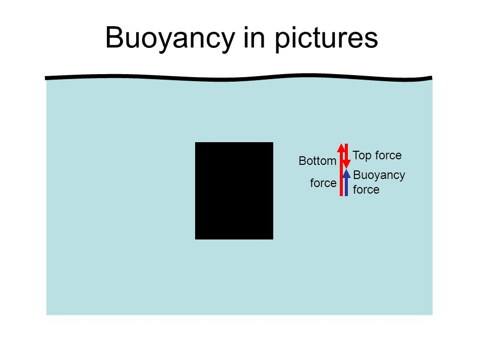 Buoyancy in pictures Top force Bottom force Buoyancy force
