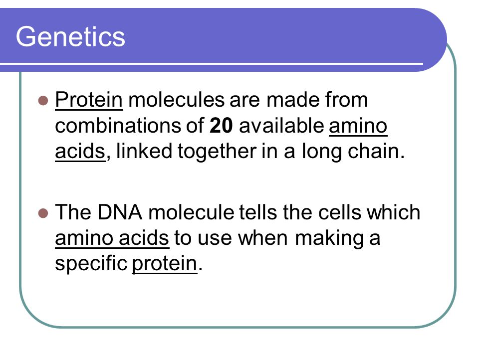 Genetics Protein molecules are made from combinations of 20 available amino acids, linked together in a long chain.
