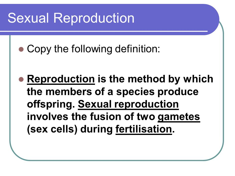 Sexual Reproduction Copy the following definition: