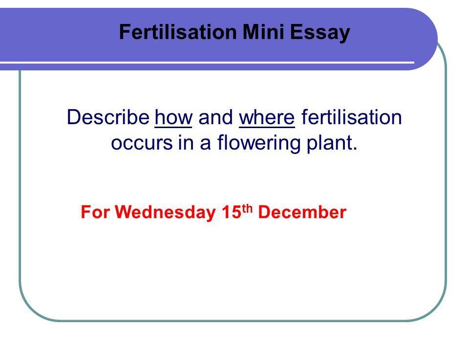 Fertilisation Mini Essay
