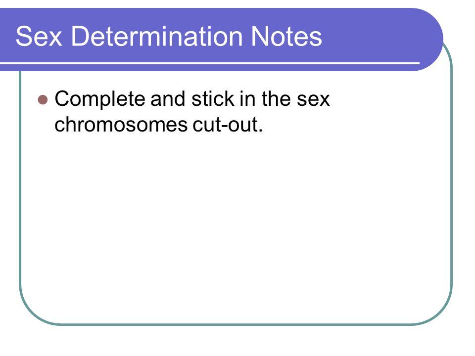 Sex Determination Notes
