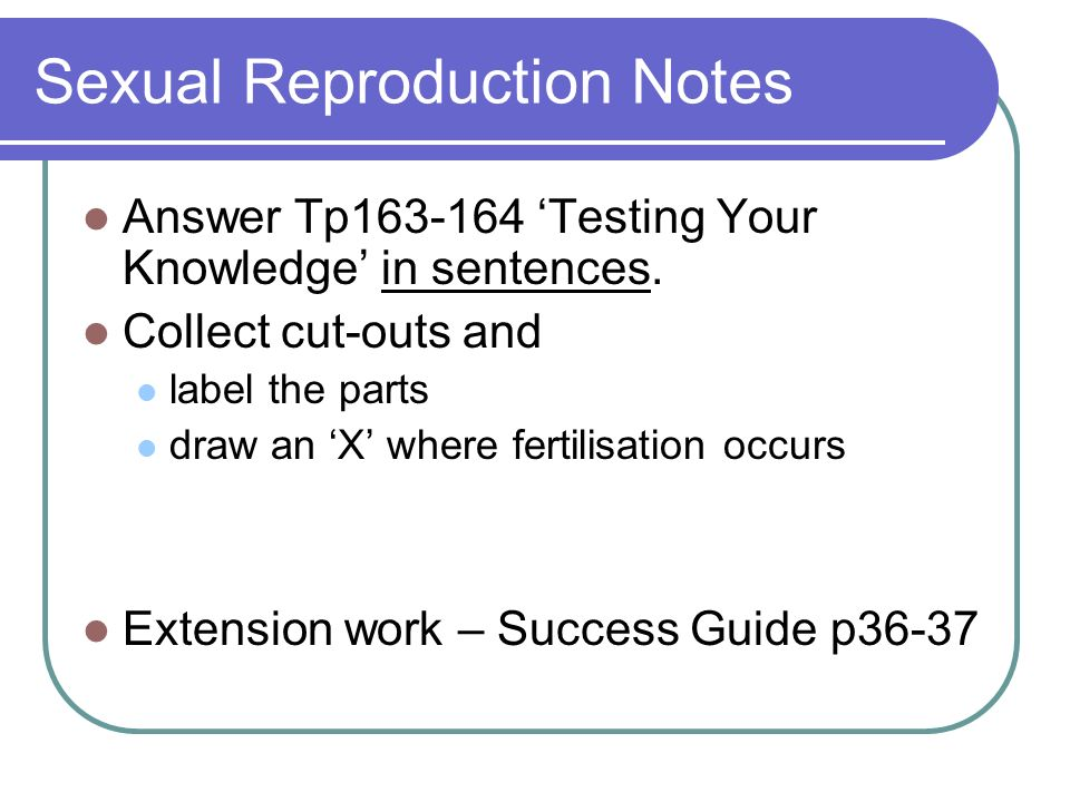 Sexual Reproduction Notes