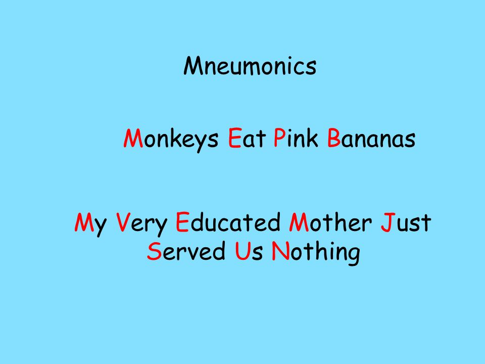 Monkeys Eat Pink Bananas