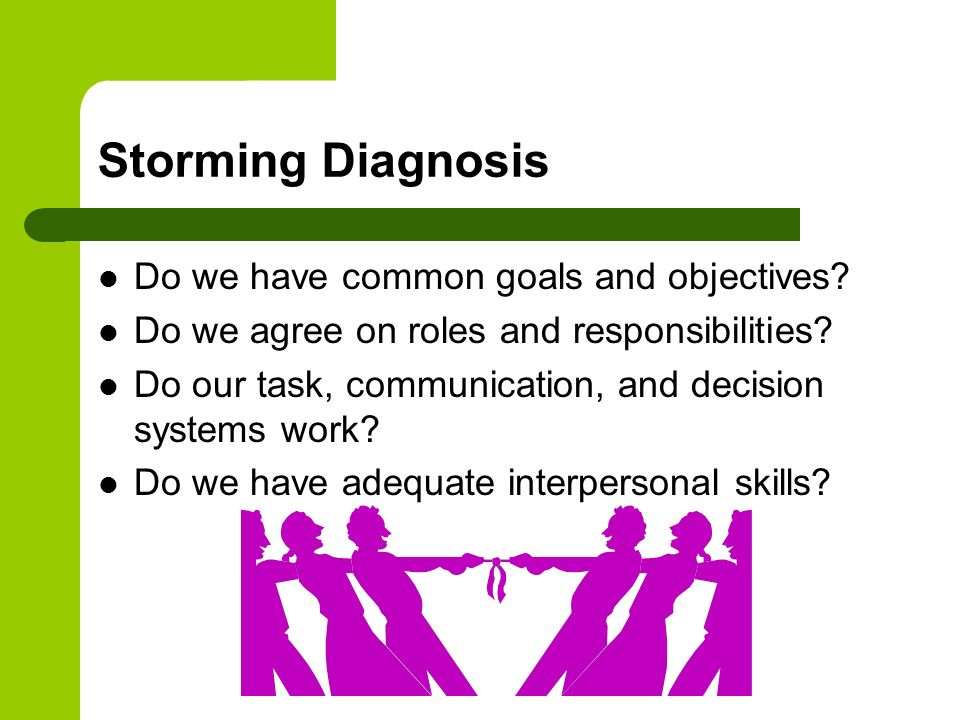 Storming Diagnosis Do we have common goals and objectives
