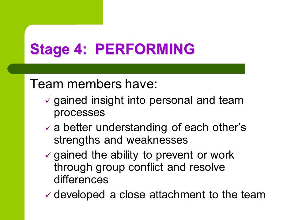 Stage 4: PERFORMING Team members have: