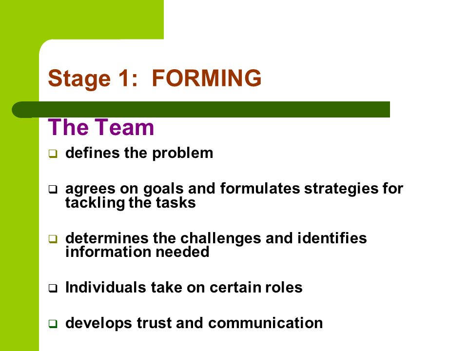 Stage 1: FORMING The Team defines the problem
