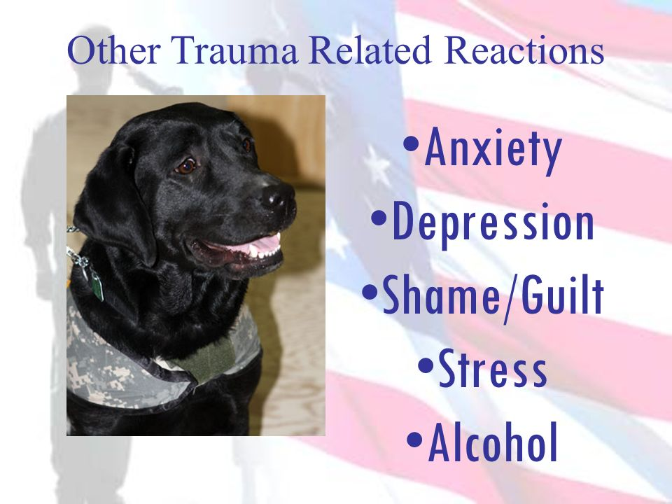 Other Trauma Related Reactions