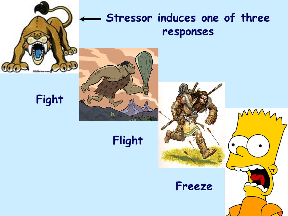 Stressor induces one of three responses