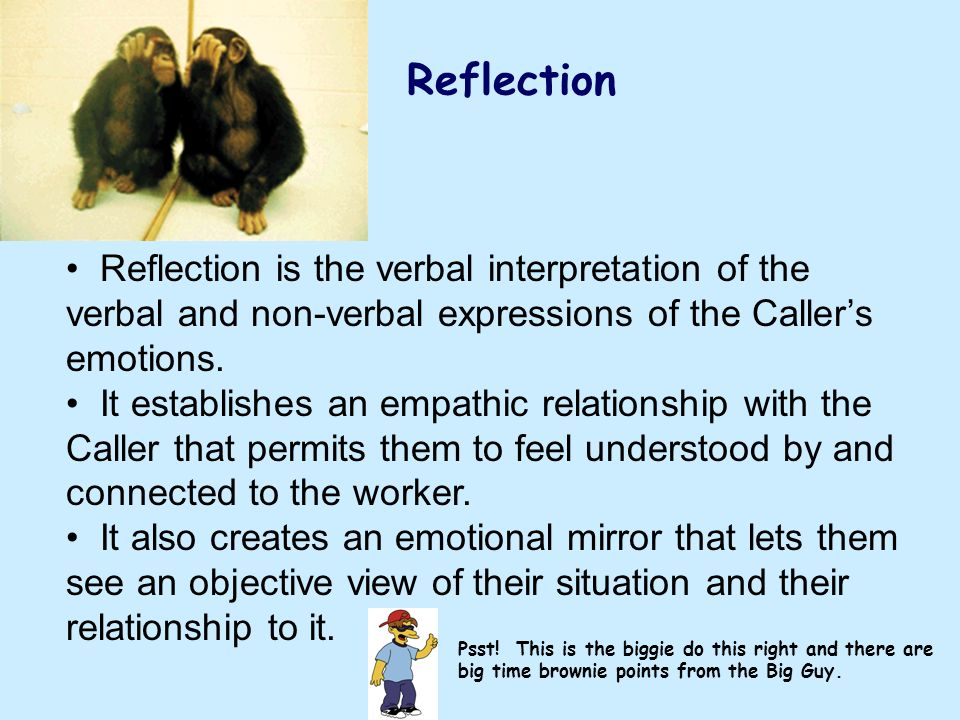 Reflection Reflection is the verbal interpretation of the verbal and non-verbal expressions of the Caller's emotions.