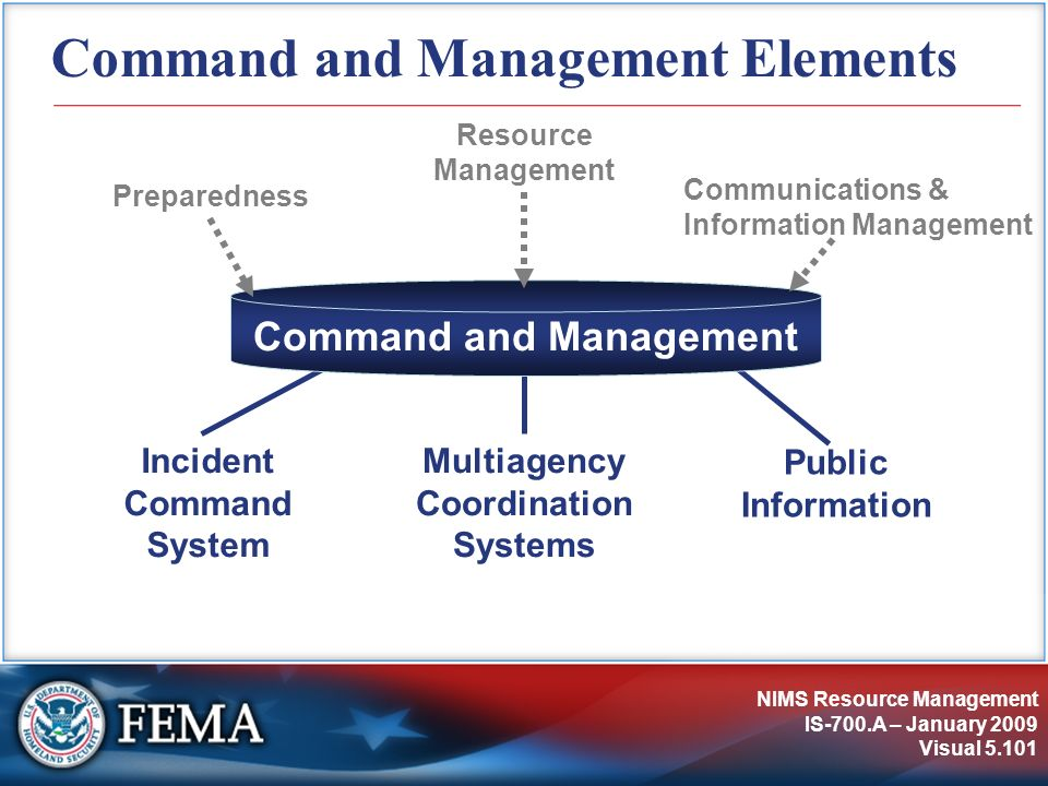 Command and Management Elements
