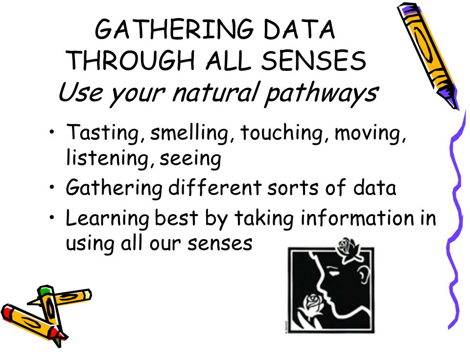 GATHERING DATA THROUGH ALL SENSES Use your natural pathways