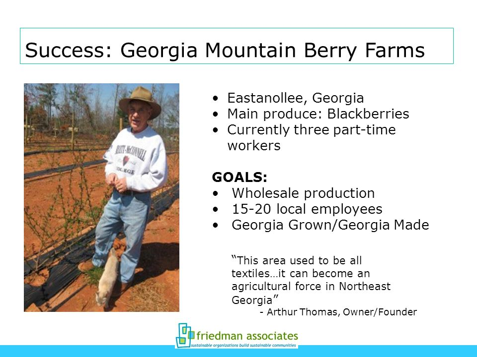 Success: Georgia Mountain Berry Farms