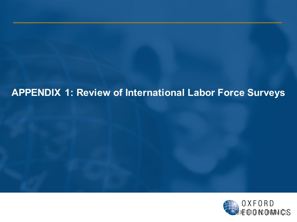 APPENDIX 1: Review of International Labor Force Surveys