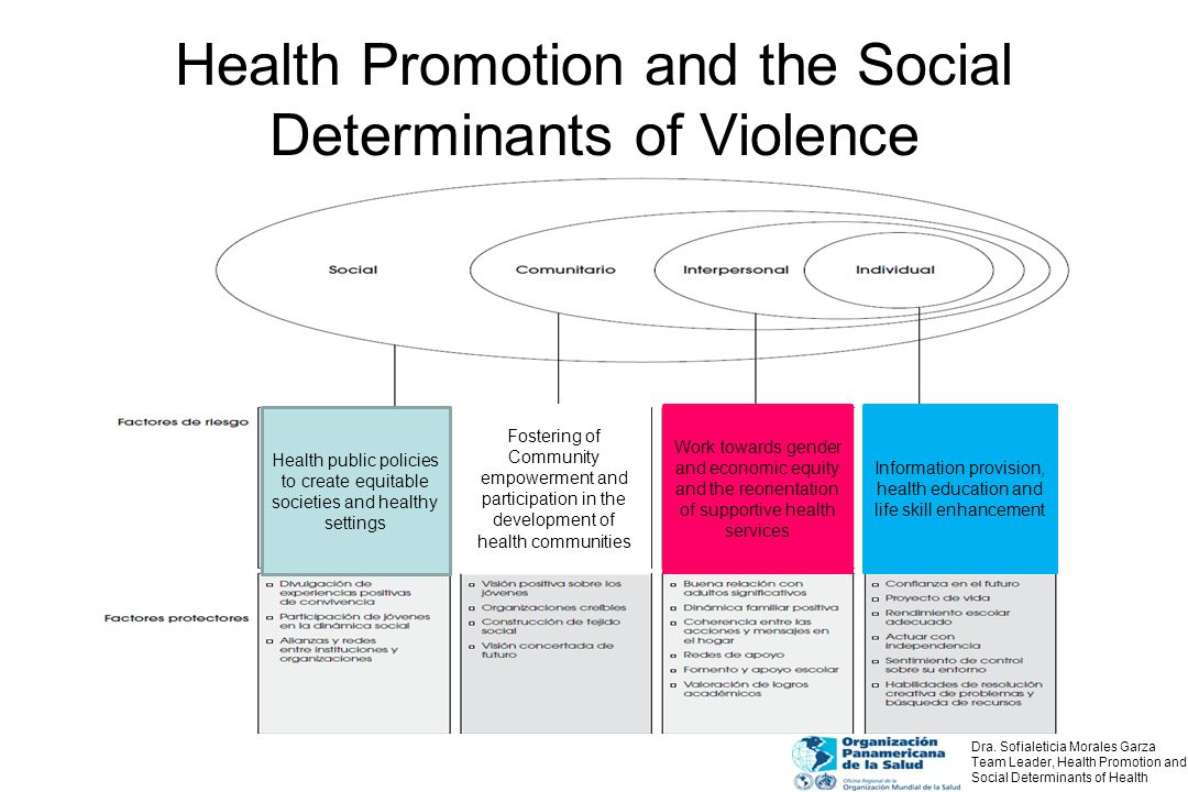 Health Promotion and the Social Determinants of Violence