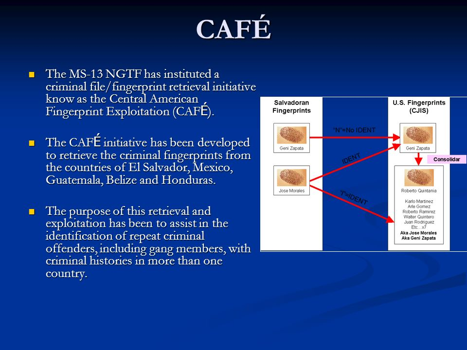 CAFÉ The MS-13 NGTF has instituted a criminal file/fingerprint retrieval initiative know as the Central American Fingerprint Exploitation (CAFÉ).