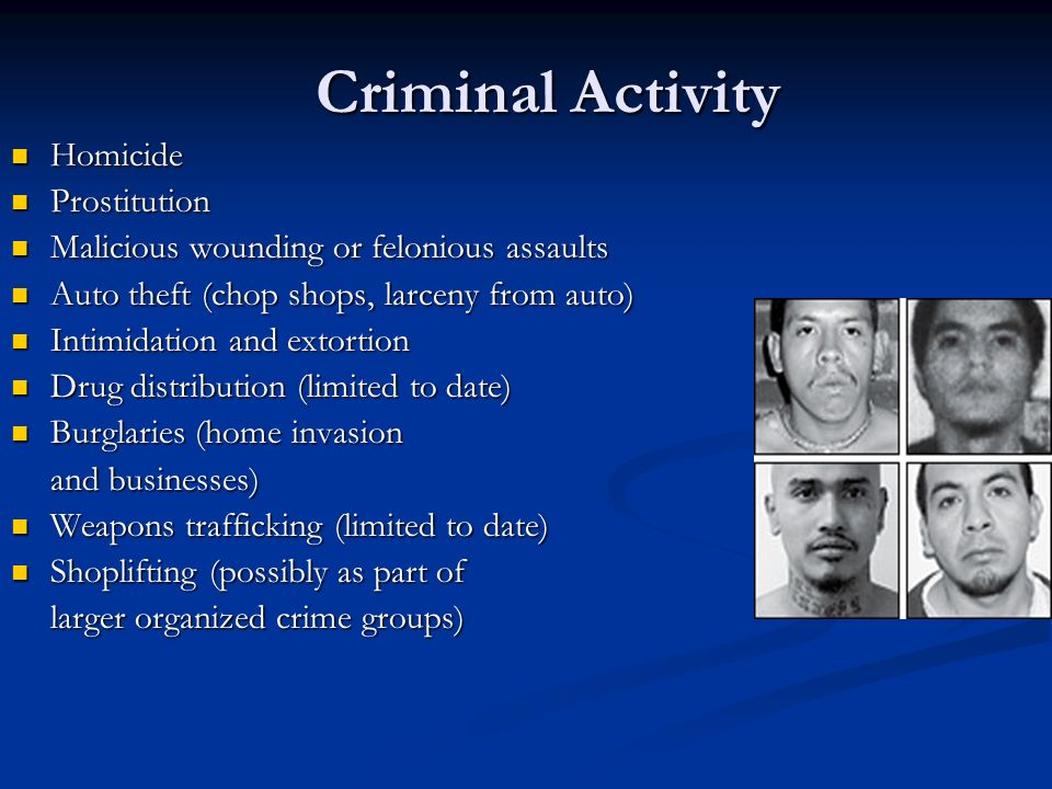 Criminal Activity Homicide Prostitution