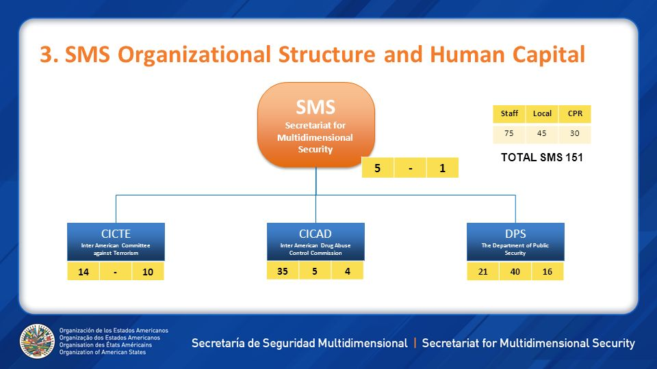 3. SMS Organizational Structure and Human Capital