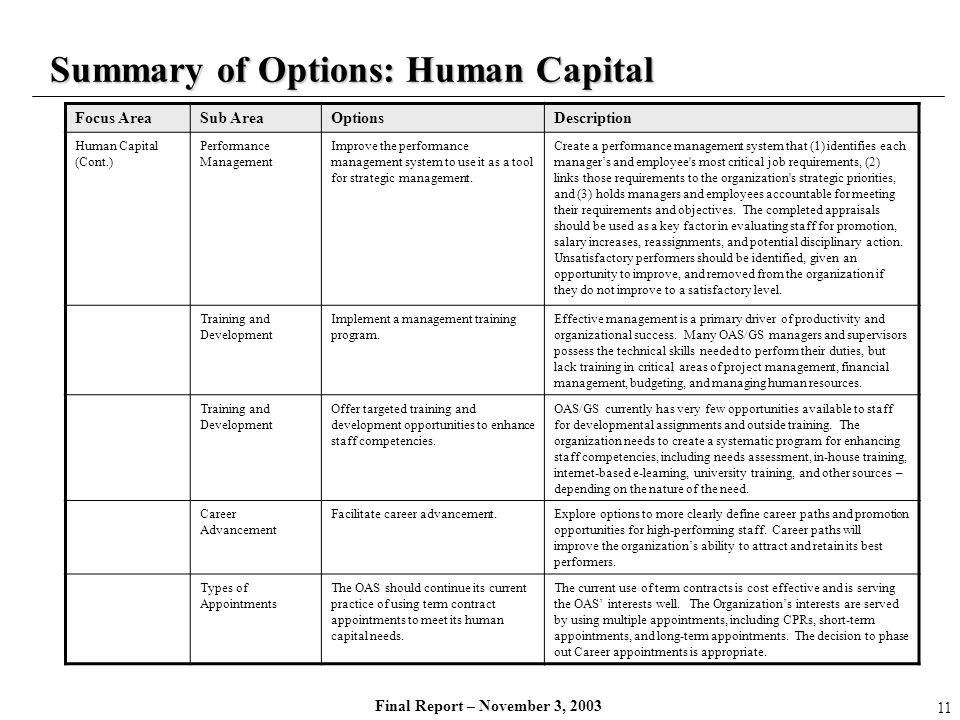 Summary of Options: Human Capital