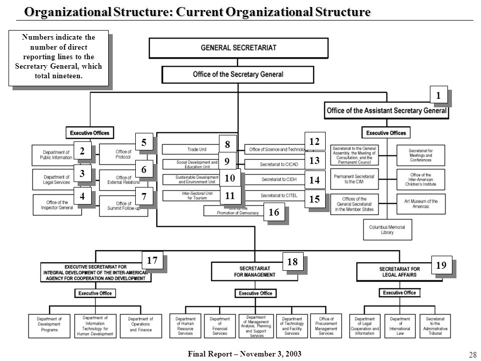 Organizational Structure: Current Organizational Structure
